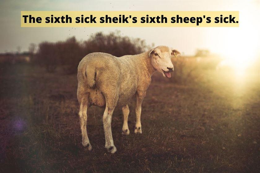 world's hardest tongue twister: The sixth sick sheik's sixth sheep's sick.